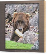 Grizzly Bear 01 Wood Print