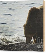 Grizzly Bear-signed-#4137 Wood Print