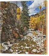 Grizzly Creek Cottonwoods Vertical Wood Print