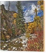 Grizzly Creek Vertical Wood Print