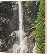 Grizzly Falls Wood Print