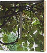 Gropius Vine Wood Print