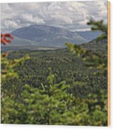 Gros Morne Wood Print