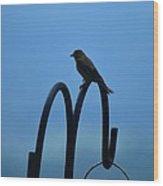 Grosbeak Silhouette Wood Print