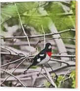 Grosbeaks Wood Print