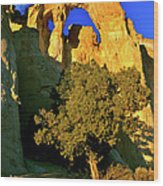 Grosvenor Arch At Sunset Wood Print