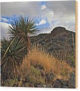 Grosvenor Hill Arizona Wood Print