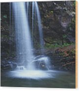 Grotto Falls Great Smoky Mountains Wood Print
