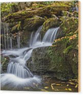Grotto Falls Great Smoky Mountains Tennessee Wood Print by Pierre Leclerc Photography