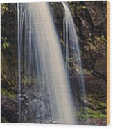 Grotto Falls Tennessee Wood Print