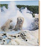 Grotto Geyser Yellowstone Np Wood Print