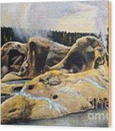 Grotto Geyser Yellowstone Np 1928 Wood Print