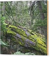 Ground Cover Wood Print