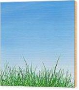 Ground Grass And Sky Wood Print