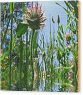 Ground Level Flora Wood Print