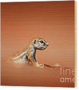 Ground Squirrel On Red Desert Sand Wood Print