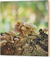 Grow Wood Print by Achmad Bachtiar