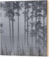 Growing In The Fog Wood Print
