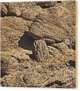 Growing Rock Wood Print