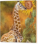 Growing Tall - Giraffe Wood Print