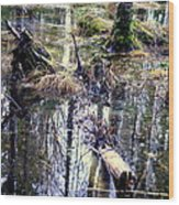 Nature Is Growing Up And Sinking Down  Wood Print