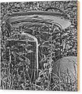 Growing Weeds Wood Print