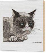 Grumpy Pussy Cat Wood Print by Jack Pumphrey