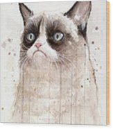 Grumpy Watercolor Cat Wood Print