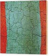 Grunge Mongolia Flag Wood Print