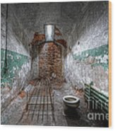 Grungy Prison Cell Wood Print