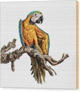 Guacamayo Wood Print