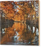 Guadalupe River, Texas Hill Country Wood Print