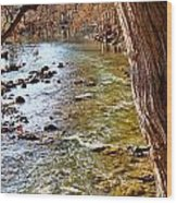 Guadalupe River View Wood Print