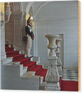 Guard At Catherine Palace In Russia Wood Print