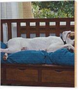 Guard Dog Wood Print