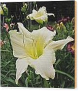 Guardian Angel Daylilies Wood Print