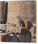 Guardian Of Hovenweep Wood Print