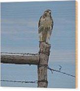 Guarding The Prairie Wood Print