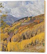 Guardsman Pass Aspen - Big Cottonwood Canyon - Utah Wood Print