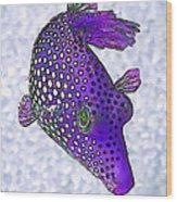 Guinea Fowl Puffer Fish In Purple Wood Print