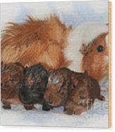Guinea Pig Family Wood Print