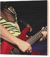 Guitar Wood Print by James Hammen