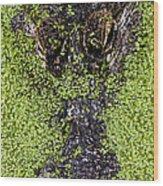 Gulf Coast Gator Wood Print