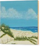 Gulf Coast I Wood Print