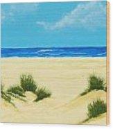 Gulf Coast Iv Wood Print