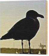 Gull At Sunset Wood Print