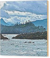 Gull Island Rookeries In Kachemak Bay-alaska Wood Print