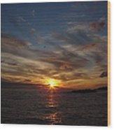 Gull Rise Wood Print