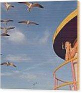 Gull Watching Wood Print