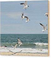 Gulls A Dance'n Wood Print